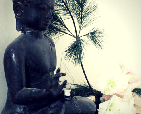 Mindfulness of The Noble Eightfold Path